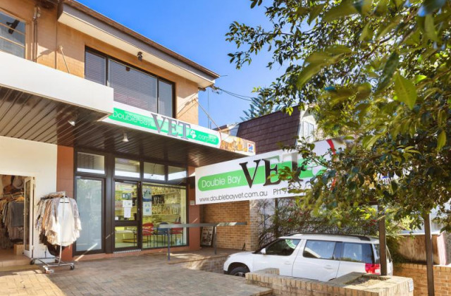123 Manning Road, WOOLLAHRA NSW, 2025