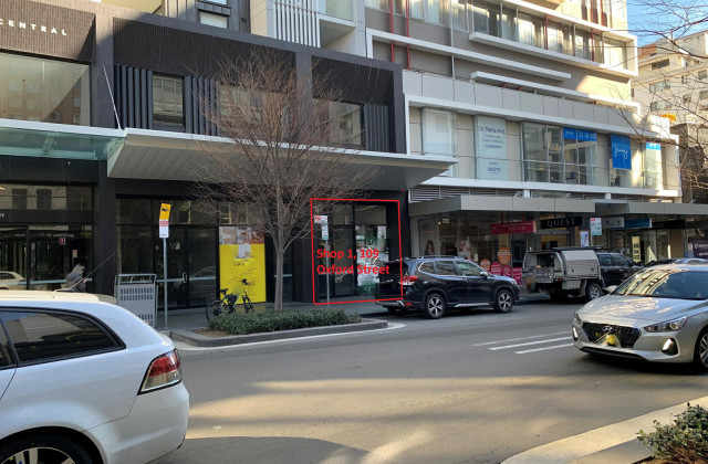 109 Oxford Street, BONDI JUNCTION NSW, 2022