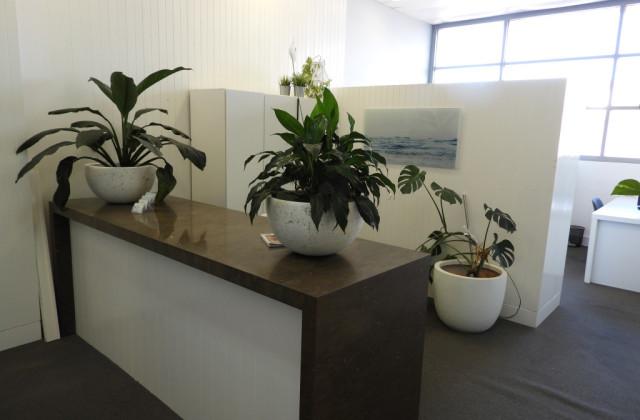 Suite 1/674-676 Pittwater Road, BROOKVALE NSW, 2100